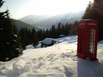 The Language Bee Davos Naturfreunde