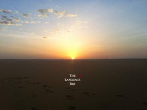 The Language Bee Sunrise